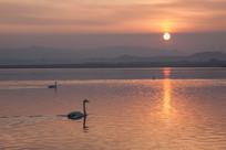 天鹅湖夕阳落日