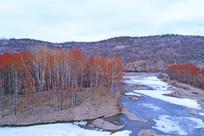 冰河红柳风景