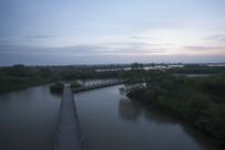 黎明时刻的湿地自然风光