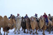 蒙古族牧民的驼队