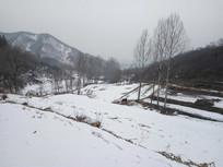 山里的雪景