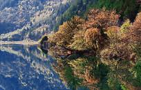 丛林湖泊风景