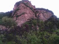 丛林中的山峰