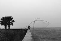滇池边捕鱼