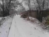 街道上的雪