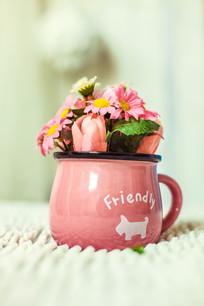 一盆粉色小花