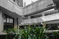 建筑内绿色