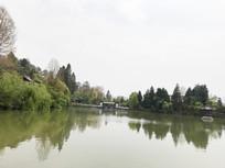 绿色的河水