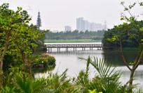 湖泊风景图片