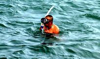 潜水高清图片