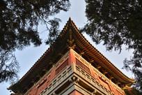宫楼建筑俯拍