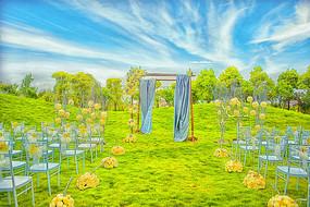 室外草坪婚礼