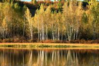 大兴安岭秋季河流