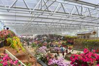 花舞人间花卉博览园