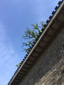 天坛古城墙