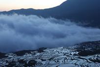 云海下的梯田