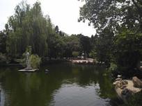 公园清澈的小河