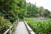 狮山公园景观一览