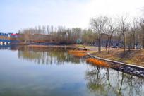 人工湖畔风景图
