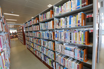 图书馆书架上的书