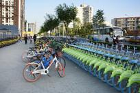 街头共享单车停放