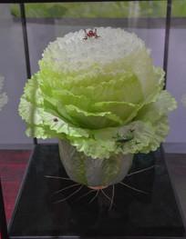 传统工艺绣织白菜