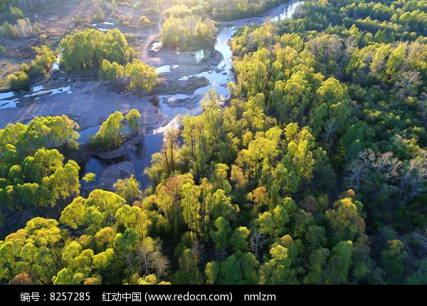 大兴安岭森林河地理风光航拍 图片