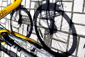 共享单车光影