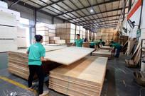 木材厂生产车间一角