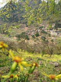 山坡下的小山村