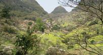 远处的小村庄