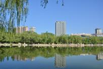 呼和浩特青城公园湖光风景