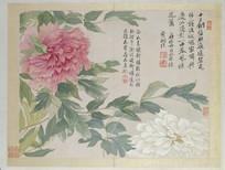 清 恽寿平 山水花鸟图册之牡丹