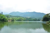 仙湖植物园湖畔