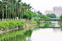 小河风景图片