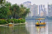 湖泊公园风景图片