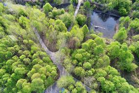 园林风光 航拍