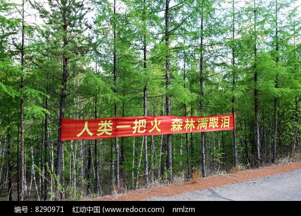 大兴安岭林区护林防火标语图片
