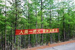 大兴安岭林区护林防火标语