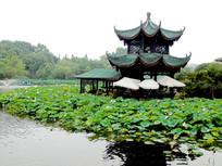 新都桂湖公园阁楼
