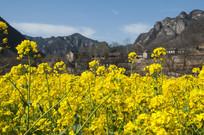 太行山区的春天