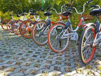 田园共享单车