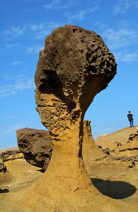 野柳地质公园的蘑菇石