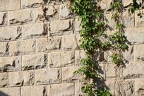 砖纹背景墙