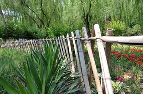 花园里的弧形栅栏