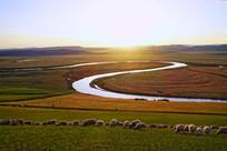 牧场河湾羊群暮色风景