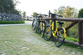 山间路边停放的共享单车
