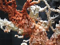 红珊瑚雕刻