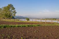 额尔古纳河清晨