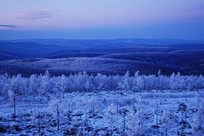 茫茫的林海雪原